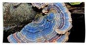 Blue Turkeytail Fungi Bath Towel