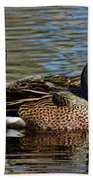 Blue Winged Teal Pair Bath Towel
