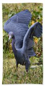 Blue Wings And Green Pond Bath Towel