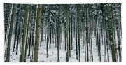 Blue Winter Forest Hand Towel