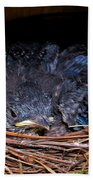 Bluebird Babies Dreaming Of Flight Bath Towel