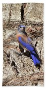 Bluebird On Canary Island Palm II Bath Towel