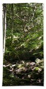 Bluestone State Park Mountain Stream West Virginia Bath Towel