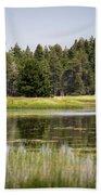 Bluff Lake Ca 12 Bath Towel