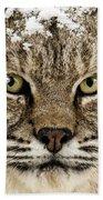 Bobcat Whiskers Bath Towel