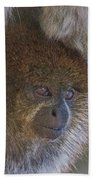 Bolivian Grey Titi Monkey Bath Towel by Larry Linton