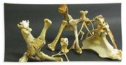 Bone Creatures One Bath Towel