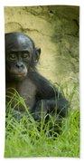 Bonobo Tyke Bath Towel