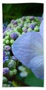 Botanical Garden Blue Hydrangea Flowers Baslee Troutman Bath Towel