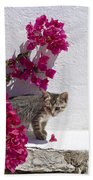 Bougainvillaea Tabby Bath Towel