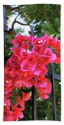 Bougainvillea On Southern Fence Bath Towel