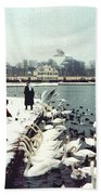 Boy Feeding Swans- Germany Bath Towel