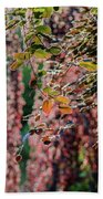 Branches Of A Tree With Colorful Leaves Shining In The Sunlight Bath Towel