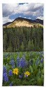 Bridger Teton National Forest Bath Towel