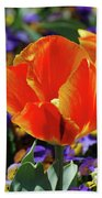 Bright And Colorful Orange And Red Tulip Flowering In A Garden Bath Towel