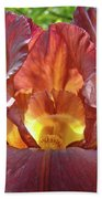 Bright Colorful Iris Flower Irises Baslee Troutman Bath Towel