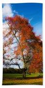 Bright Fall Colors Bath Towel