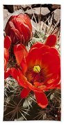 Bright Orange Cactus Blossoms Bath Towel