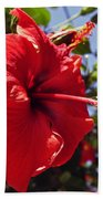 Brightly Colored Hibiscus On The Greek Island Of Mykonos  Bath Towel