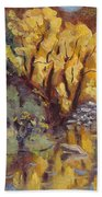 Brilliance At Service Creek Steamboat Springs Colorado Hand Towel