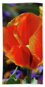 Brilliant Bright Orange And Red Flowering Tulips In A Garden Bath Towel