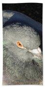 British Pigeon Bath Towel