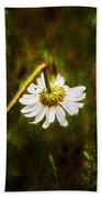Broken Hearted Oxeye Daisy Asteraceae  Bath Towel