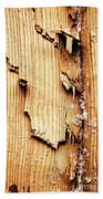 Broken Old Stump Spruce Bath Towel