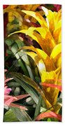 Bromeliads Bath Towel