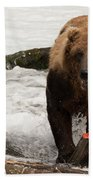 Brown Bear Eating Salmon Tail Beside Rocks Bath Towel