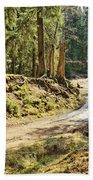 Brown Dirty Road Under Spring Sun Rays Bath Towel