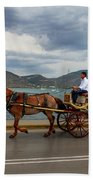 Brown Horse Drawn Carriage Hand Towel