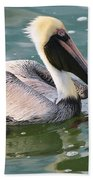 Brown Pelican In The Bay Bath Towel
