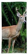 Buck Hand Towel