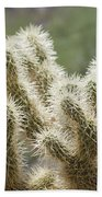 Buckhorn Cholla Bath Towel