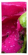 Buds And Drops Bath Towel