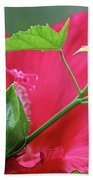 Buds Before Blooms Hand Towel