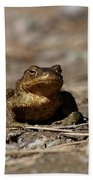 Bufo Bufo Bath Towel