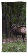 Bull Elk Bugle Bath Towel
