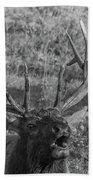 Bull Elk Bugling Bath Towel