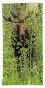 Bull Moose Guards The Aspen Bath Towel