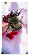 Bumble Bee Making His Escape From Hibiscus Flower Bath Towel