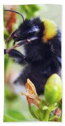 Bumble Bee On Flower Bath Towel