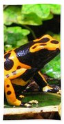 Bumble Bee Poison Frog Bath Towel