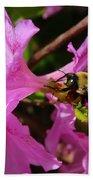 Bumblebee In Azalea Bath Towel