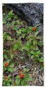 Bunchberry Berries Bath Towel