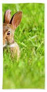 Bunny In Field  Bath Towel