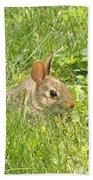 Bunny In The Grass Bath Towel