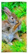 Bunny Secrets Bath Towel