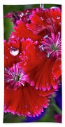 Burgandy Red Dianthus Bath Towel